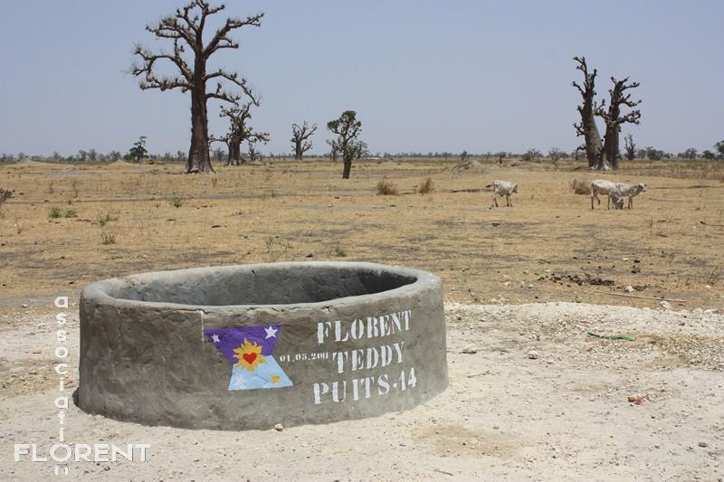 puits 14 - TEDDY - Mbodiène