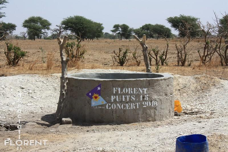 puits 15 - CONCERT 2010 - Ndiémane