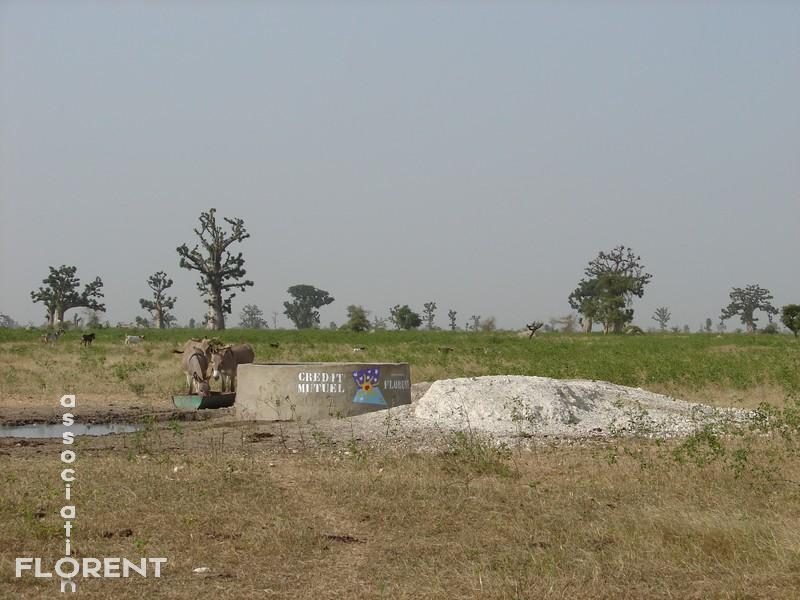 puits 4 - CREDIT MUTUEL - Ndianda Peulh